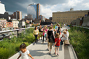 High Line Manhattan West Side New York City USA..New York has a new park. The elevated High Line was built for freight trains in the 1930s. The group 'Friends of the High Line' saved it from being demolished and created an unusual public park on its elevated tracks. It is located on Manhattan's West Side. It runs from Gansevoort Street in the Meatpacking District to 34th Street, between 10th & 11th Avenues. Section 1 of the High Line, which opened to the public on June 9 2009, runs from Gansevoort Street to 20th Street. It features an integrated landscape, designed by landscape architects James Corner Field Operations, with architects Diller Scofidio + Renfro..New York hat einen neuen Park. Die erhoehte Schienenstrasse wurde in den 30ger Jahren fuer Lastzuege gebaut. Die Gruppe 'Freunde der High Line' hat sie nun vom Abriss bewahrt und mit Unterstuetzung der Stadt New York einen Park in luftiger Hoehe erschaffen. Er befindet sich auf Manhattans West Seite und verlaeuft von der Gansevoort Strasse im Meatpacking District zur 34ten Strasse zwischen der 10the und 11ten Avenue. Der Park wurde teilweise am 9. Juni 2009 eroeffnet. Seine integrierte Landschaft wurde von dem Landschaftsarchitektur Buero James Corner Field Operations mit den Architekten Diller Scofidio + Renfro gestaltet.