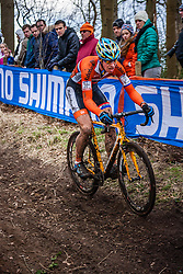 Niels WUBBEN (31,NED), 5th lap at Men UCI CX World Championships - Hoogerheide, The Netherlands - 2nd February 2014 - Photo by Pim Nijland / Peloton Photos