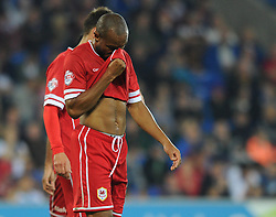 Cardiff City's Danny Gabbidon cuts a dejected figure as Cardiff City lose 0 - 3 to AFC Bournemouth in the Capital One league cup - Photo mandatory by-line: Dougie Allward/JMP - Mobile: 07966 386802 - 23/09/2014 - SPORT - FOOTBALL - Cardiff - Cardiff City Arena - Cardiff City v AFC Bournemouth - Capital One Cup - Third Round