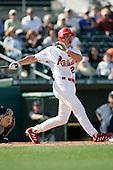 2006 MLB