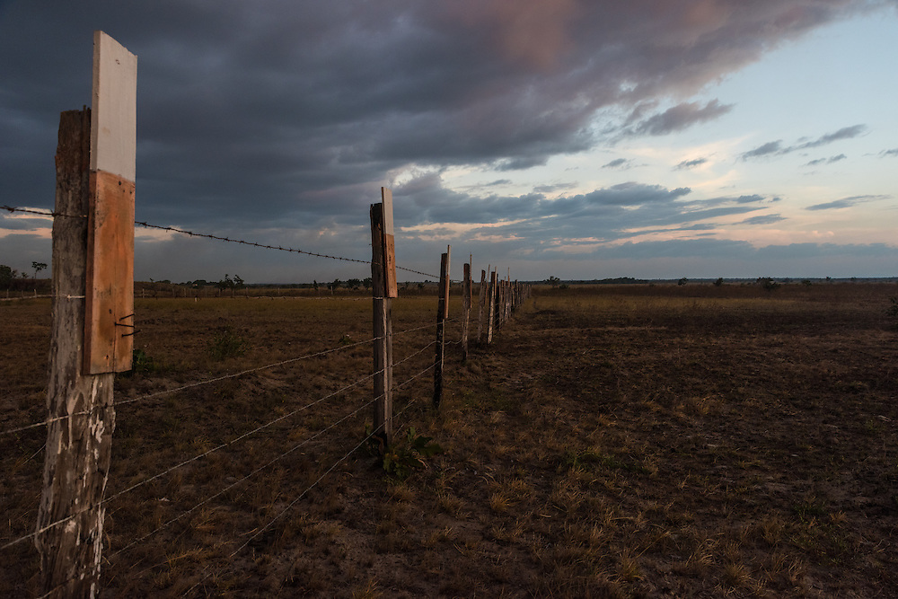 Fence and a the dry savannah landscape of the Rupununi, Rupununi, Guyana.